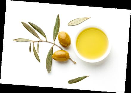 oli d'oliva verge ecològic