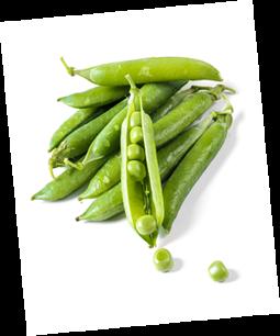 Conserva de verdures ecològiques per a restauració